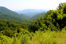 Georgia Mountains